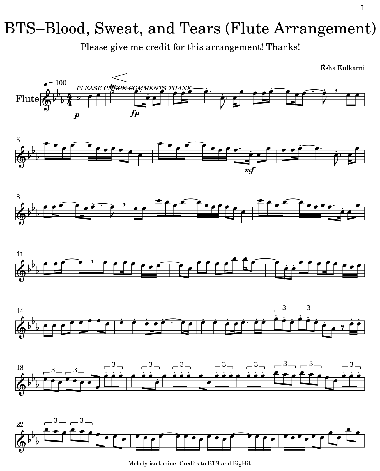 BTS–Blood, Sweat, And Tears (Flute Arrangement)